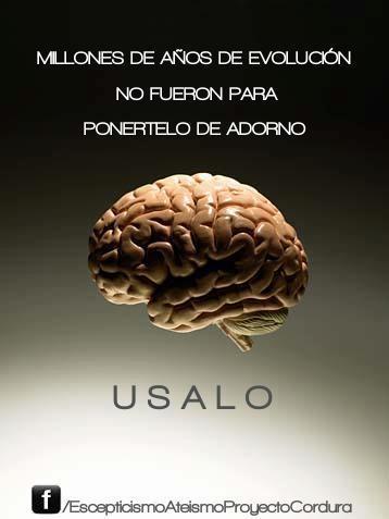 Cerebro_usalo